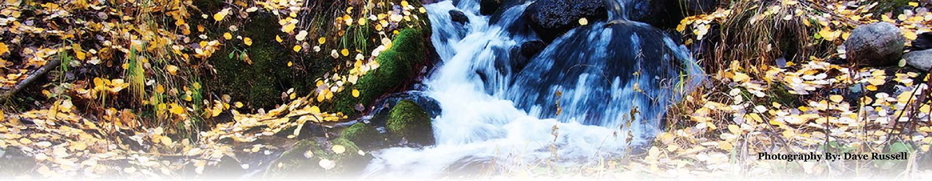 The services of Fall Rivers: benefit cost containment, health care group coverage, and group plans for small busienss.